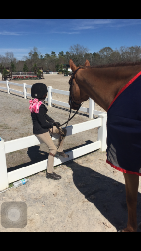 cute pony kid watching main hunter