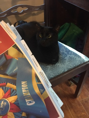 I can't read mom.